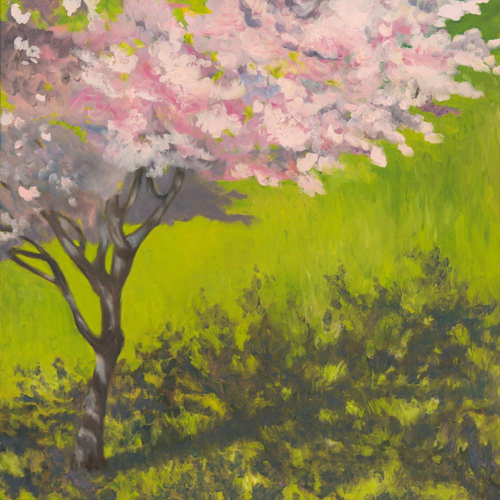 Cherry tree rzlalu