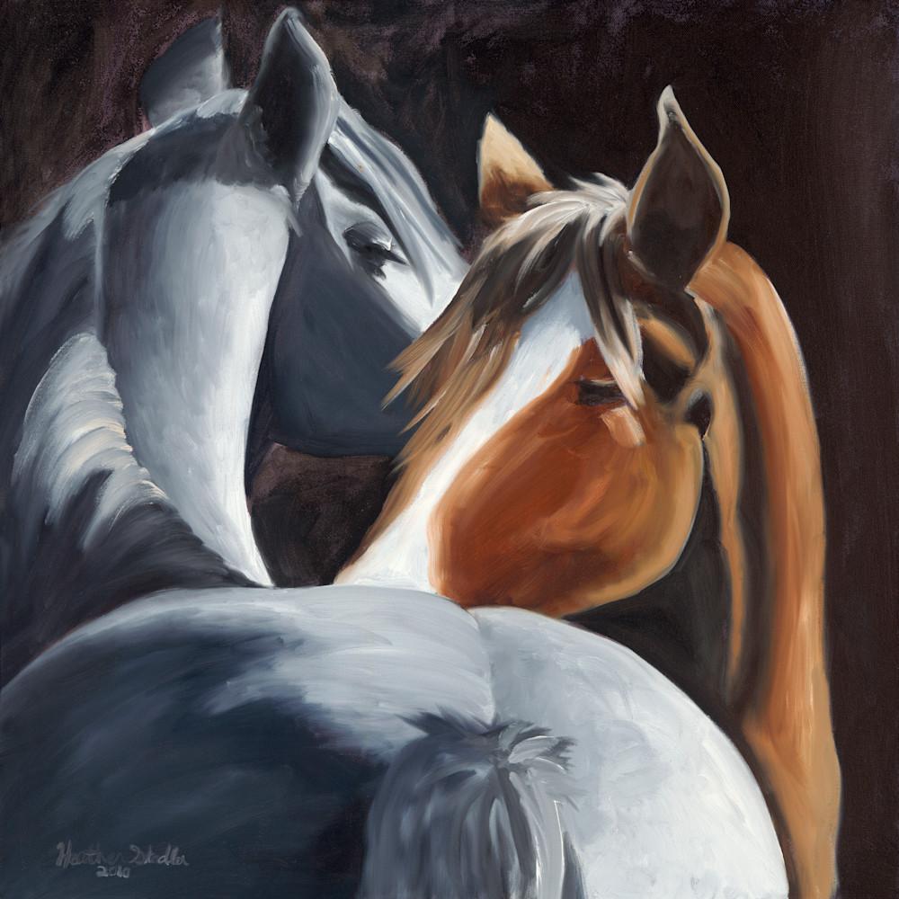 Horses i7iqsf