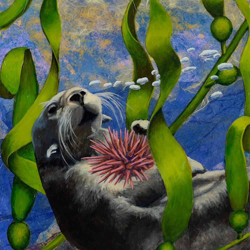 Saving the kelp forest sfu4ne