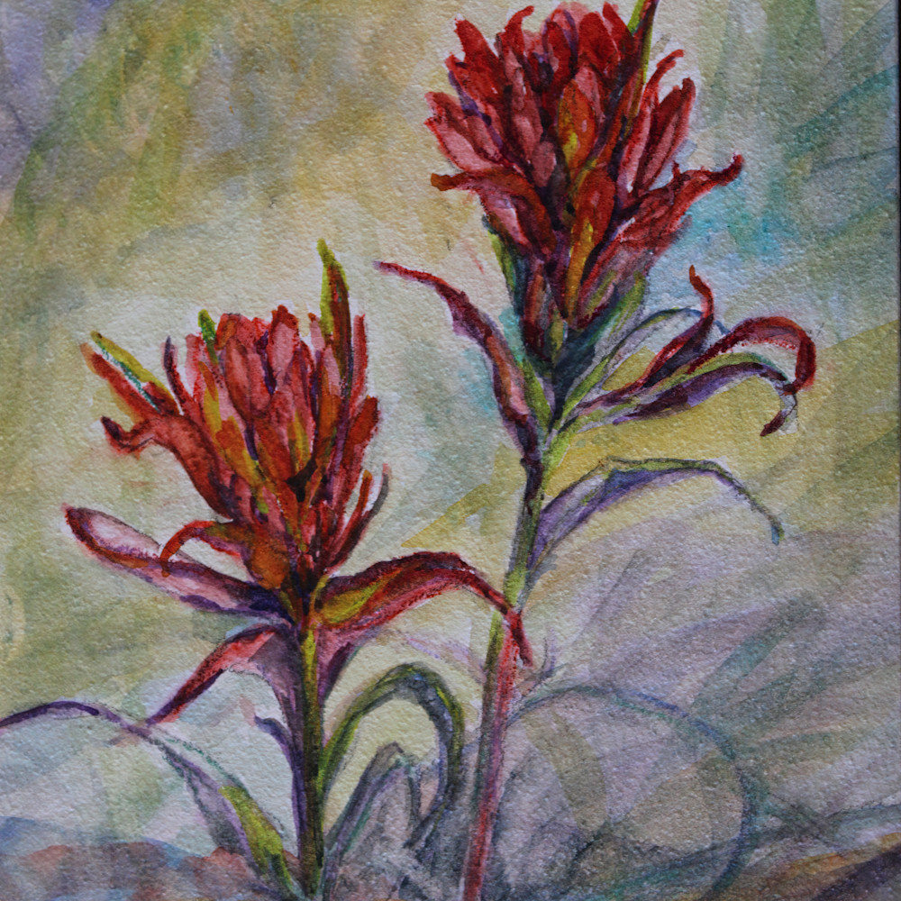 14c21 texas paintbrushes 5x7 varnished watercolor lindy cook severns 2g honz7y