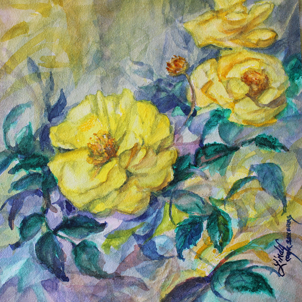 13c21 yellowest rose of texas 6x6 varnished watercolor lindy cook severns 2g mhrkol
