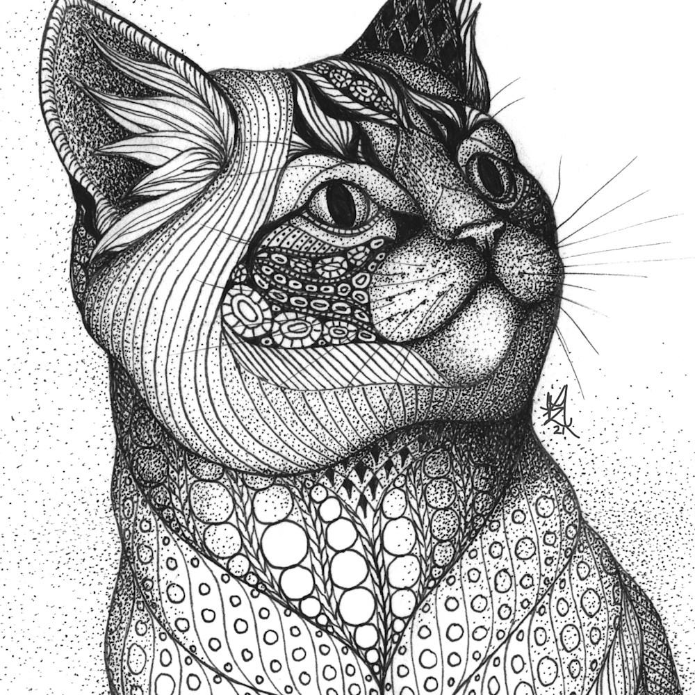 Grey kitty2 gpbhqp