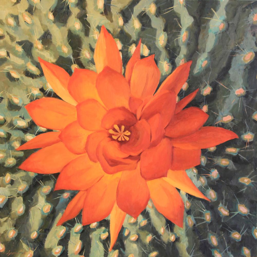 Cactus flowers 10 30x30 1 n9i4rr
