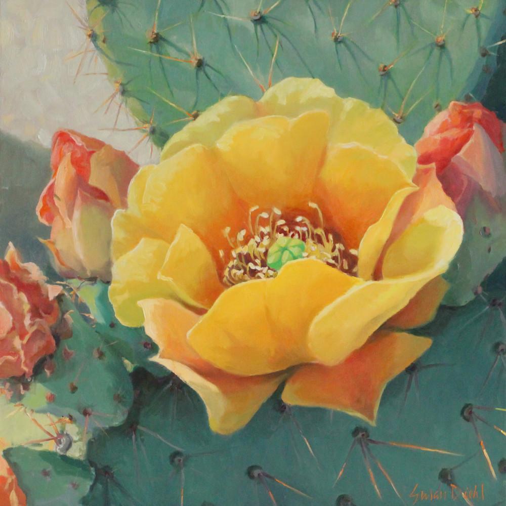 Cactus flowers 30x30 12 gigapixel standard scale 2 00x umegvh
