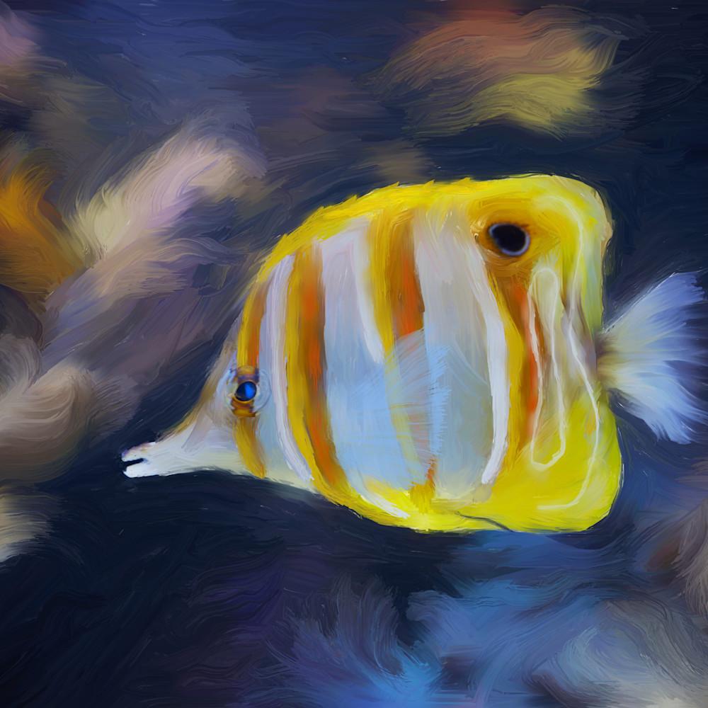 Yellow fish qqhita
