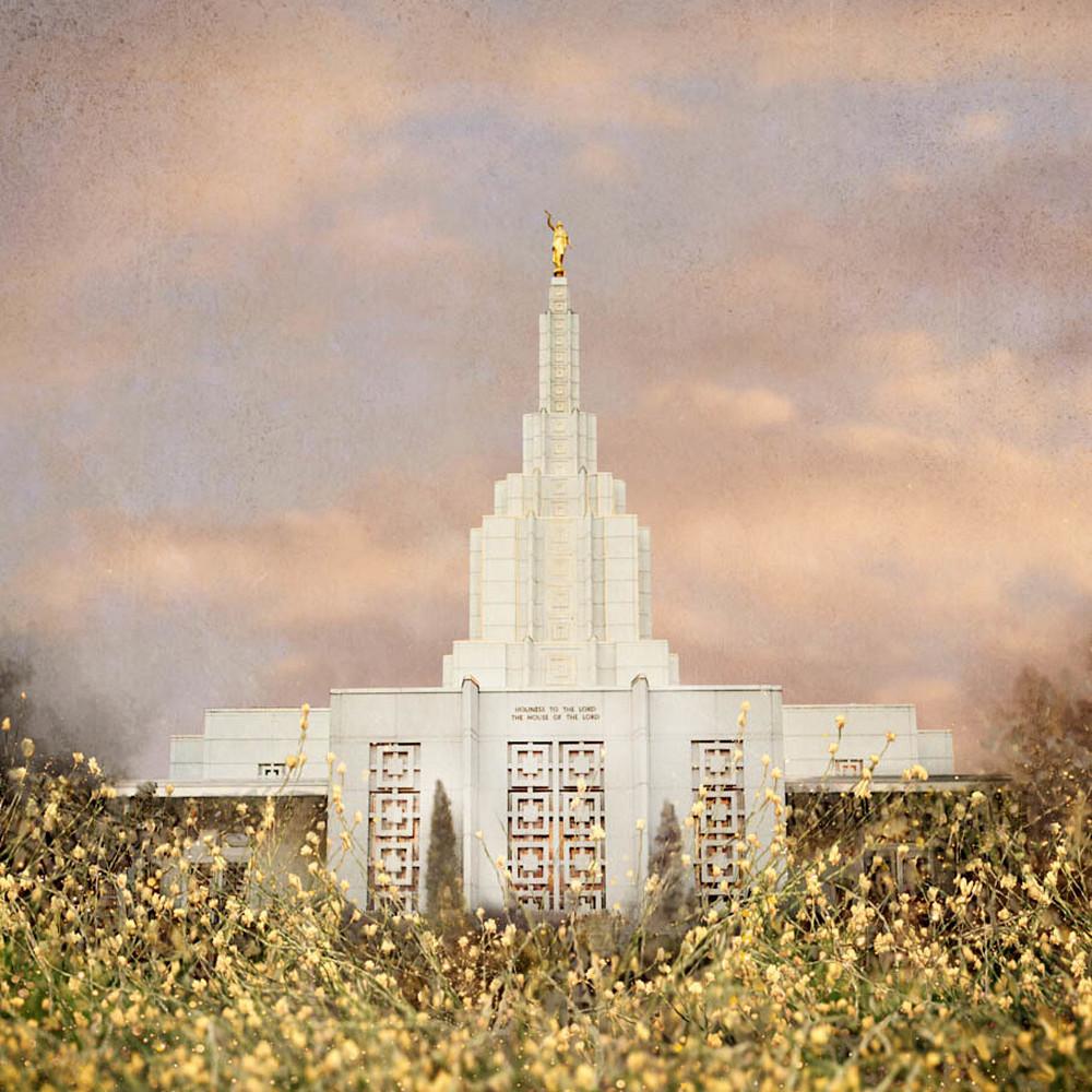 Idaho falls idaho temple   giving rest mandy jane williams web qljfhj
