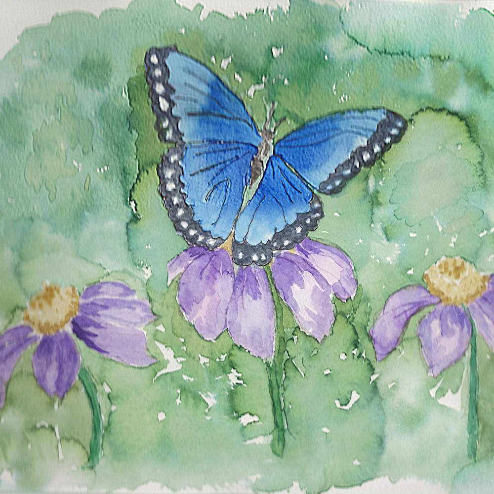 Blue butterfly print d639cc