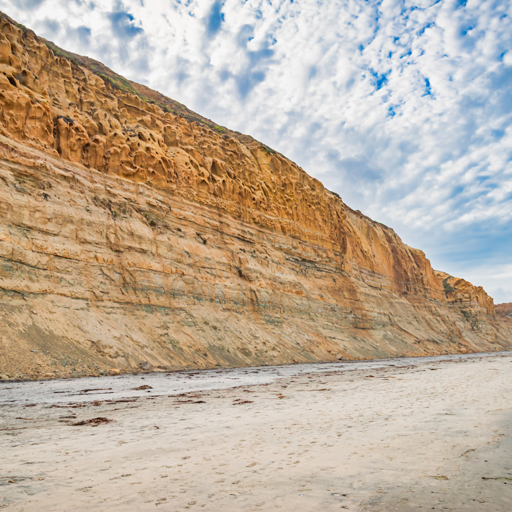 Torrey pines beach la jolla yil94z