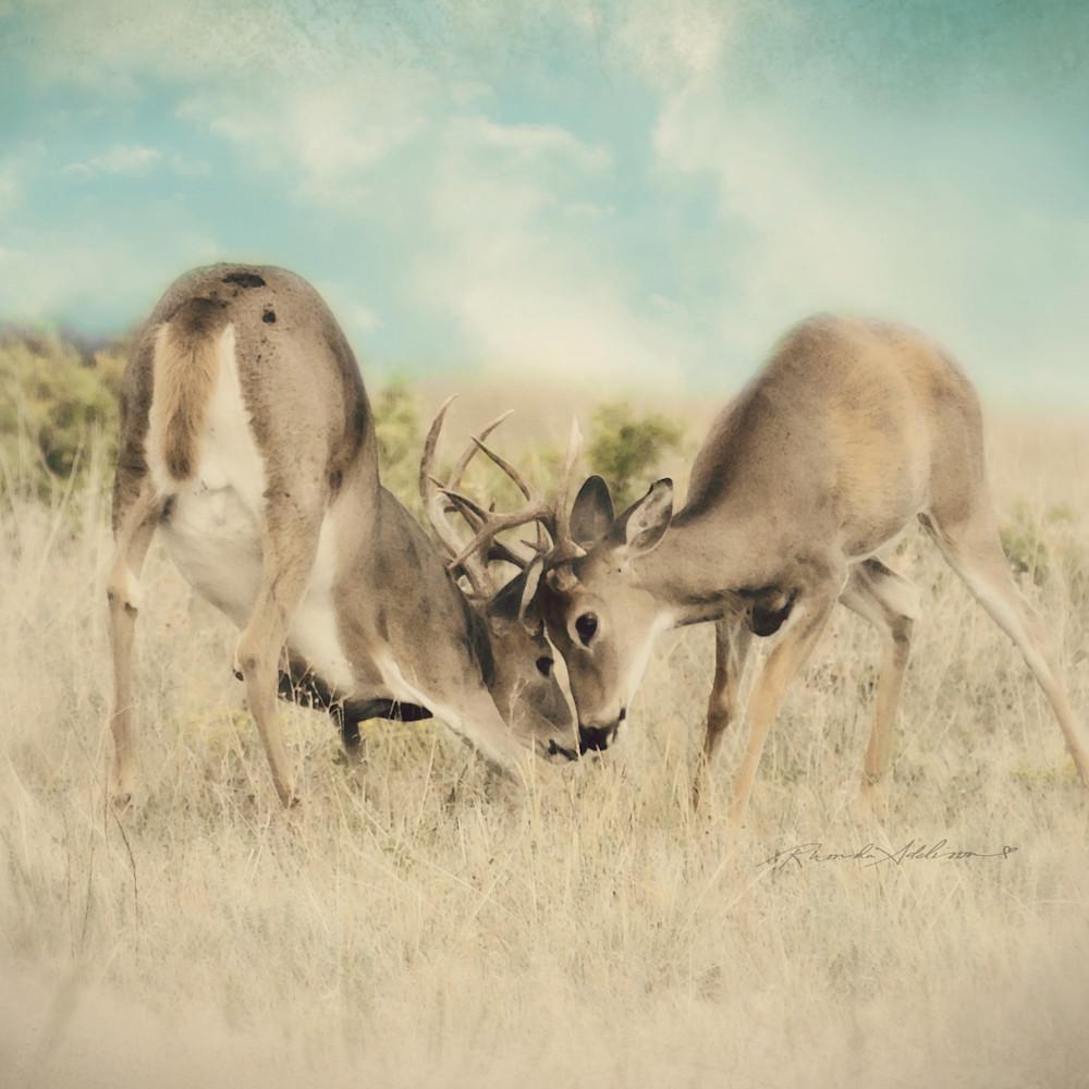 Bucks game on s au1rie