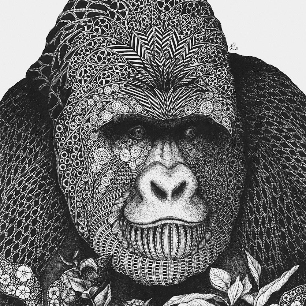 Gorilla scan dk fpn1fw