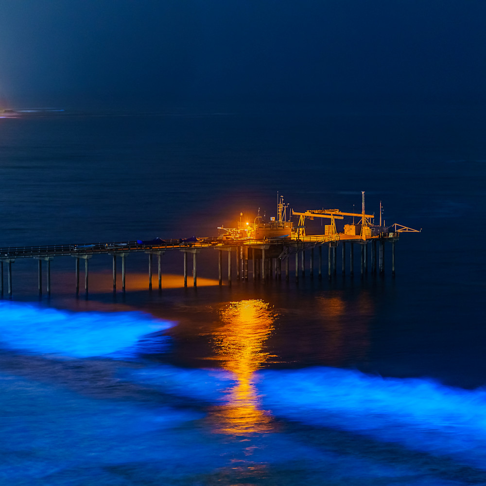 Blue biolumiinescence at scripps pier la jolla  ugoijp