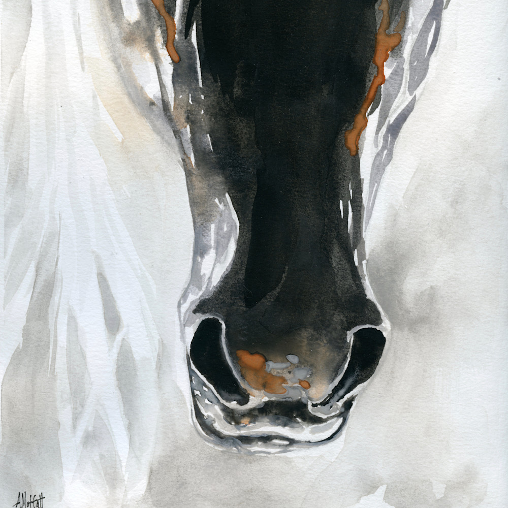 Dark horse nose077 soawx5