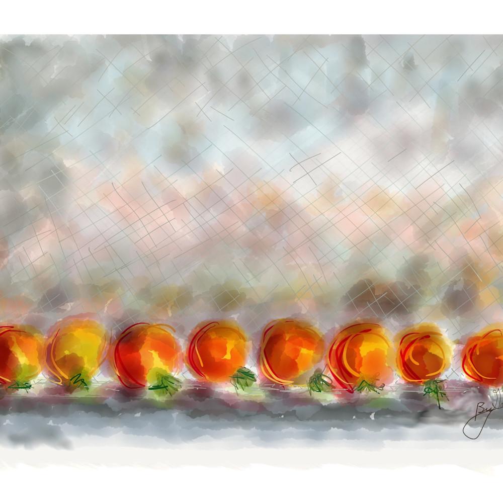 Ripening tomatos hy6m3h
