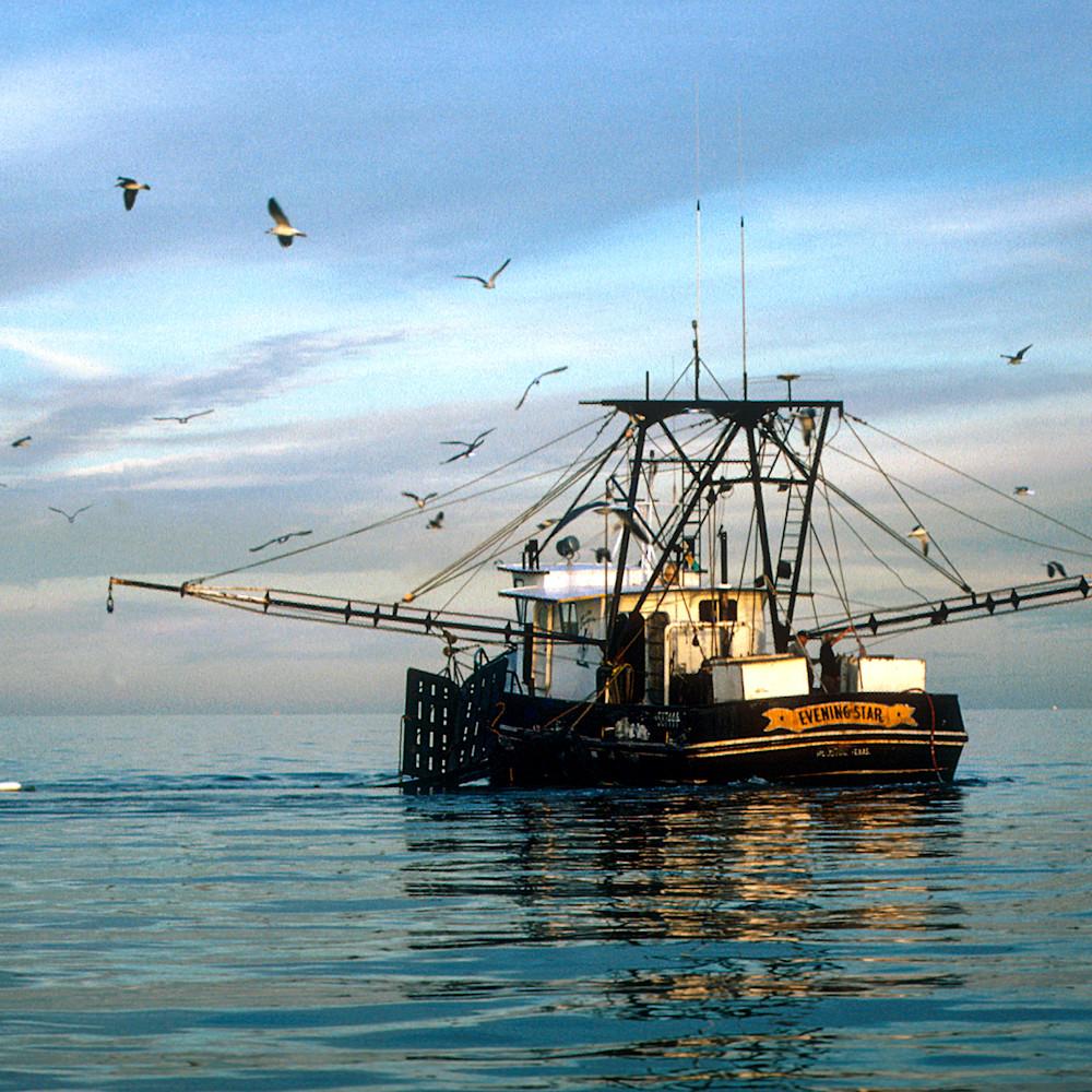 344 evening star  shrimp boat ruth burke art tyawnn