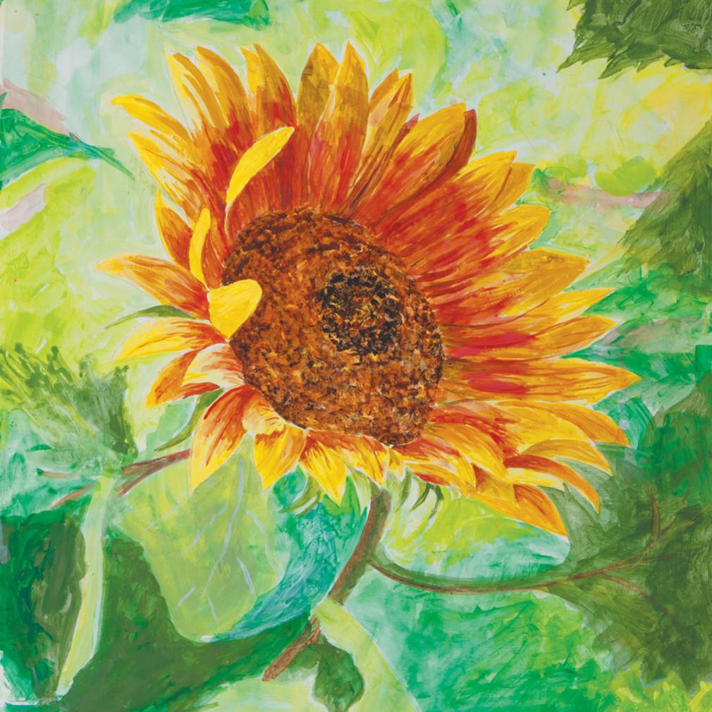 Sunflower 21x25 ndahzl