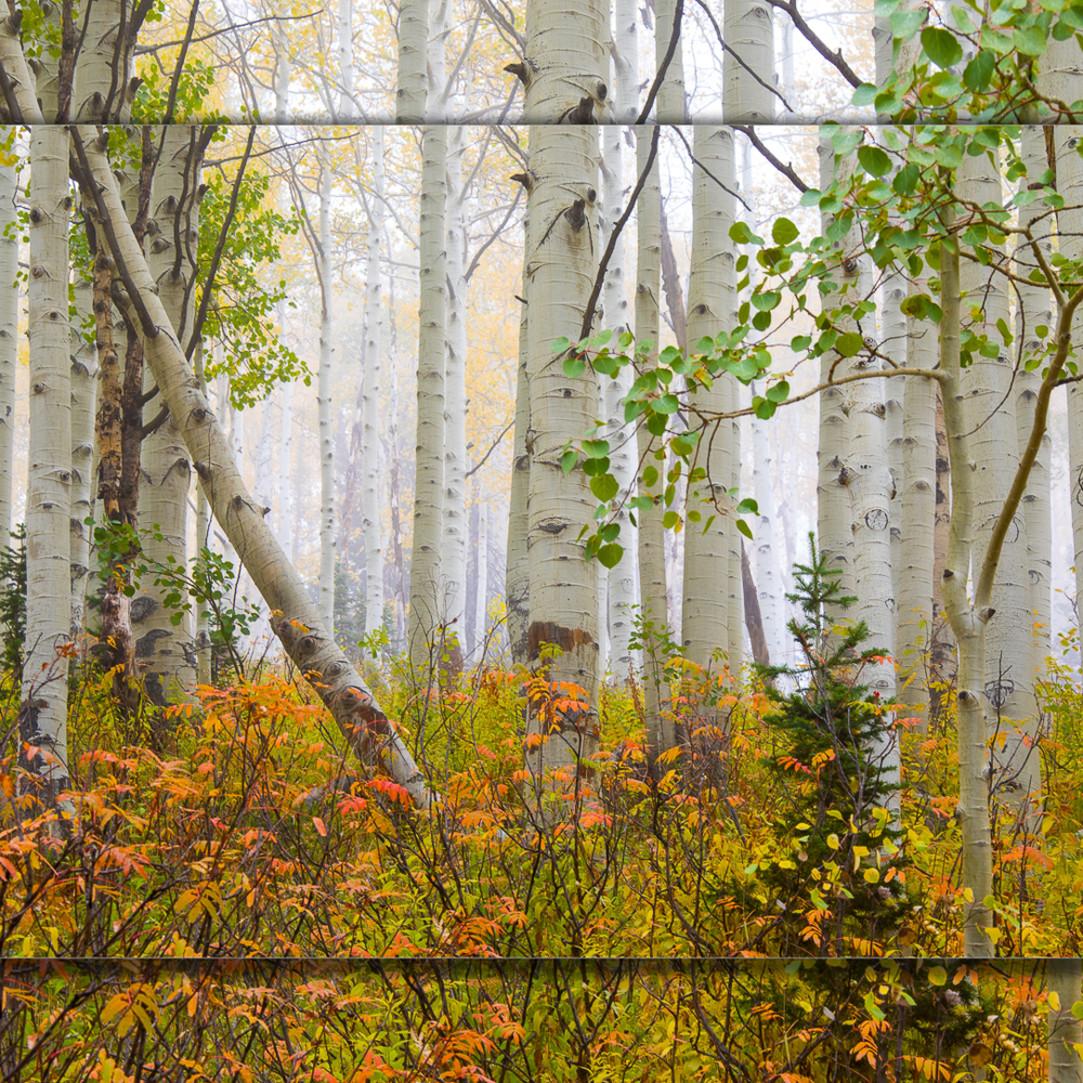 Aspen pastel 3d pi0kcn