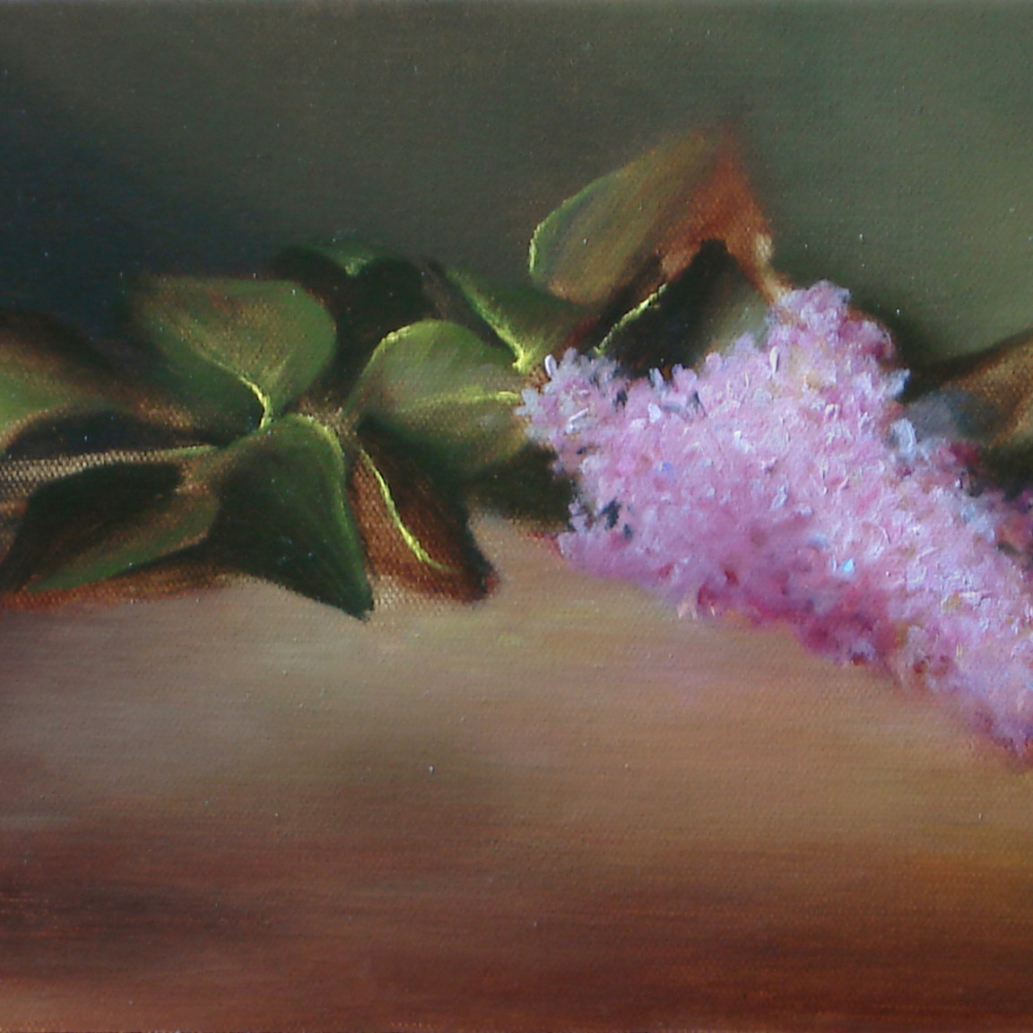 Lilac taezor