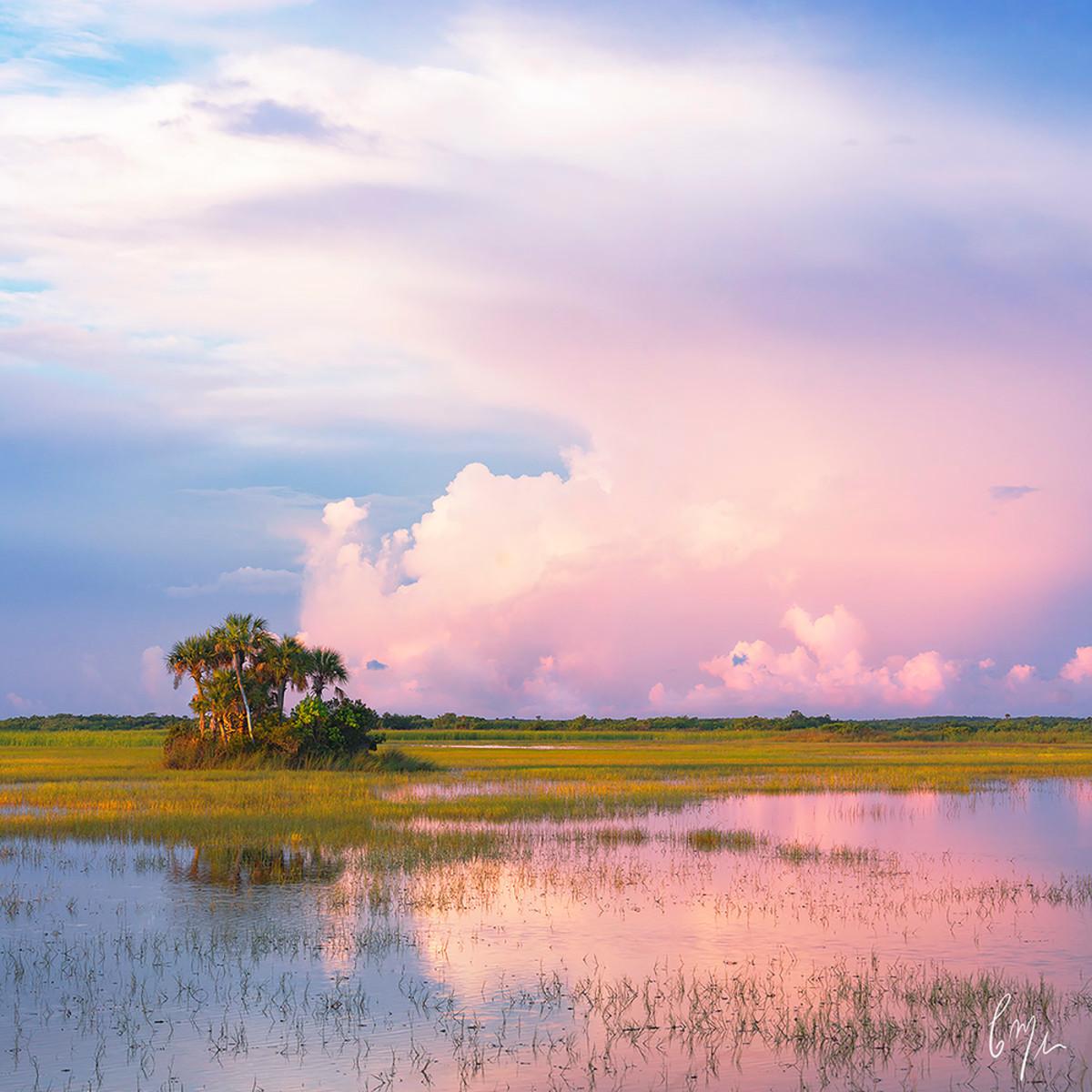 Florida summer upwuqw