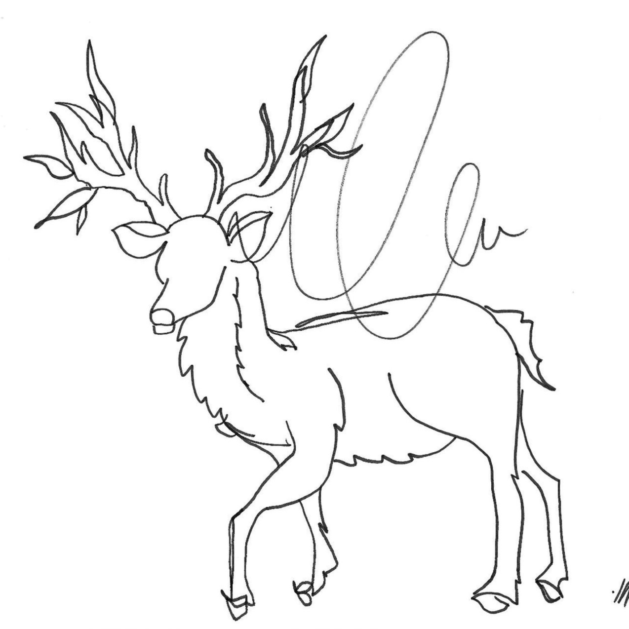 Deer t6c2dn