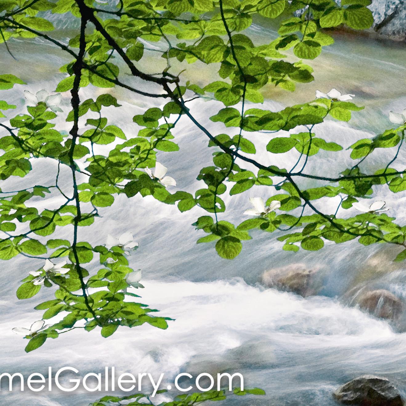Along the river bank rcxvwq