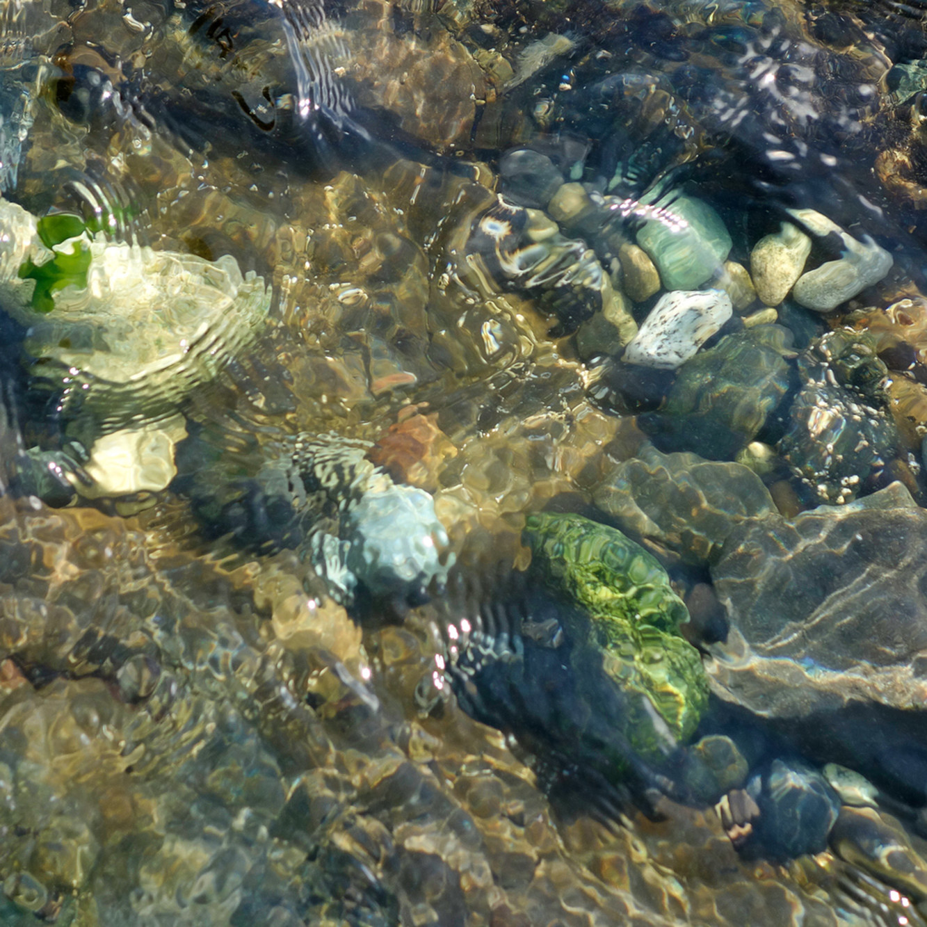 952 shoreline ripples 16x24 k4qa0d