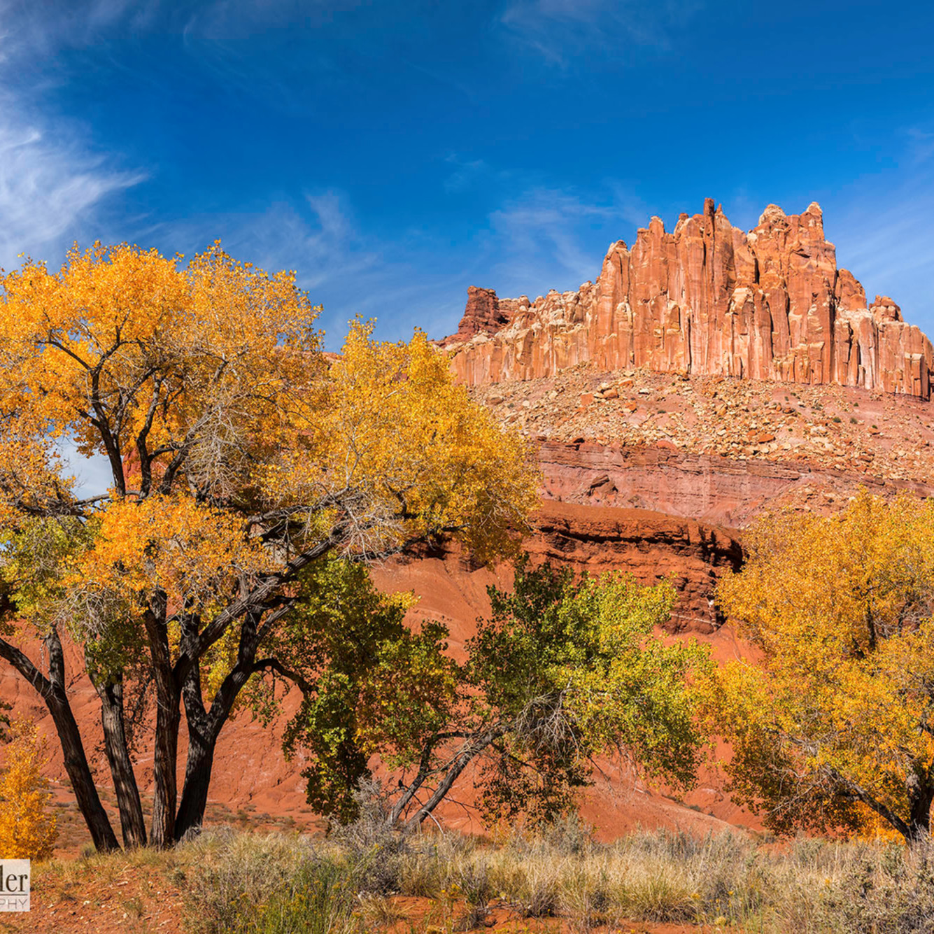 Asf 125ppi capitolreef np the castle fall cottonwoods watermarked jpg rhb3wh