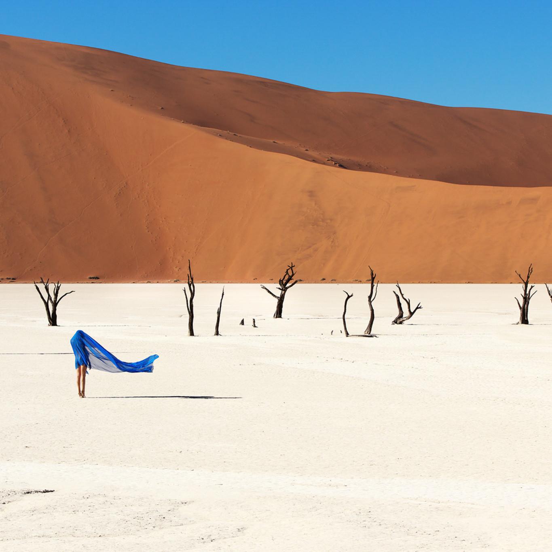 01 clayton woodley aristea ecklonii shot in namibia vbjf7b