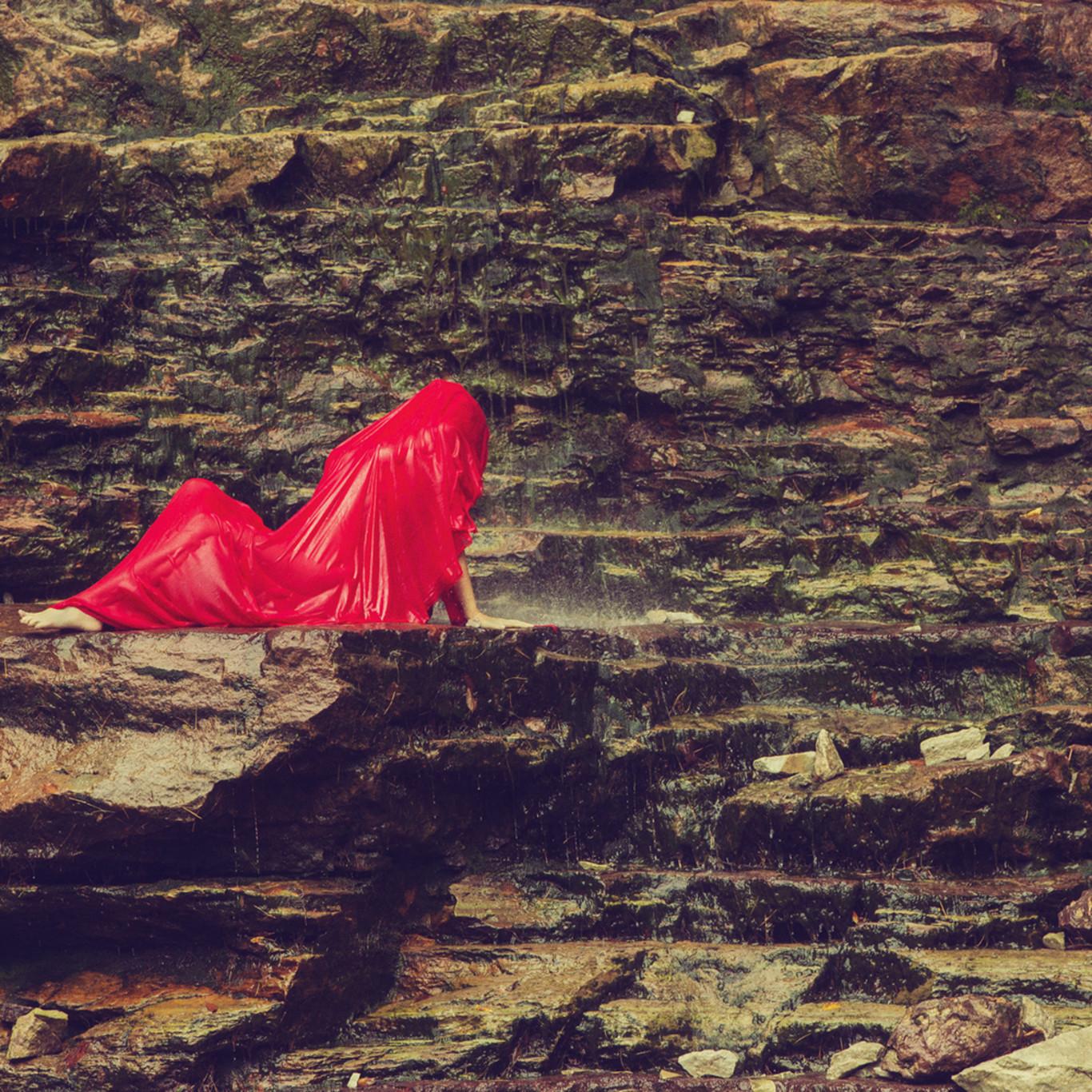 13 clayton woodley lobelia cardinalis shot in catskills ybaykg