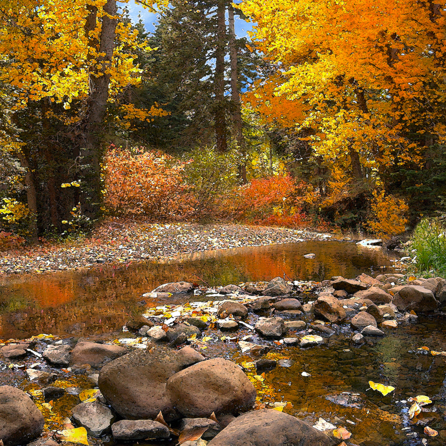 Blackwood creek autumn v7qwr8