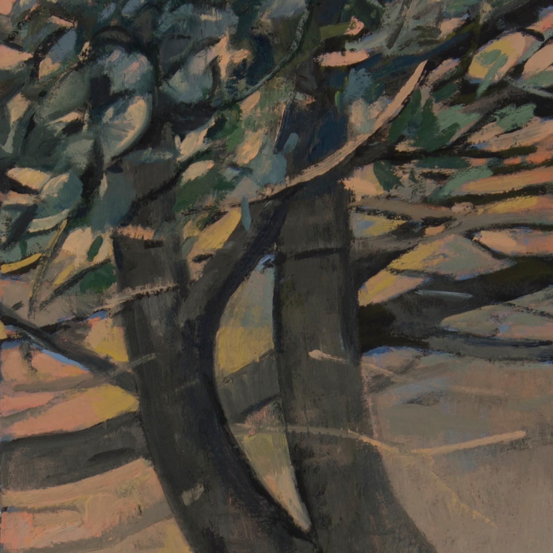 Favorite tree and jefferson park tdtys7