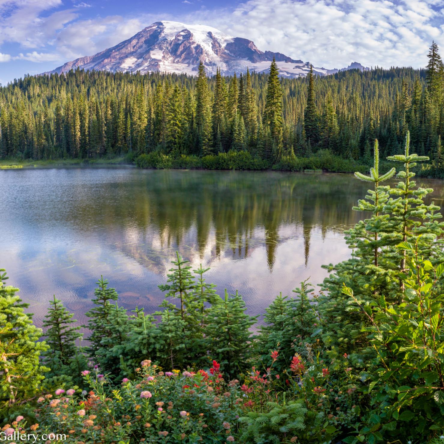 Reflection lake bloom ubnnz1