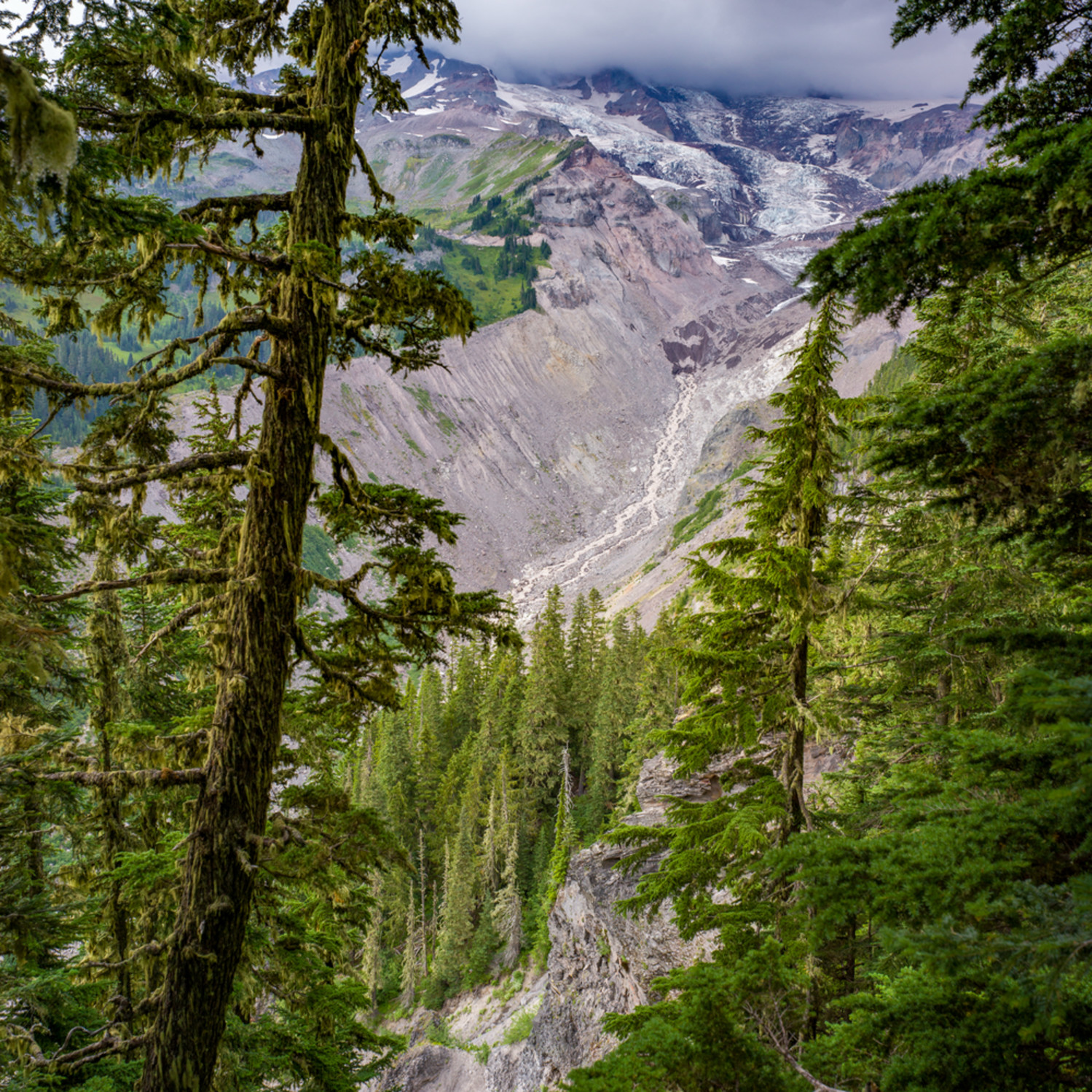 Glacier view rainier brulu0