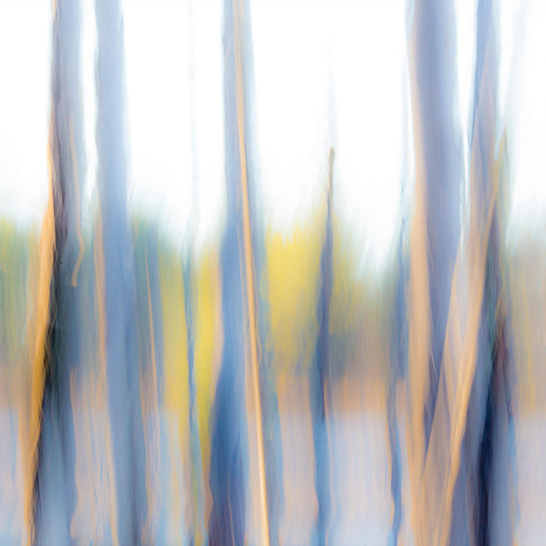 P abstract 1 2015 11 08 9999 35 copy sdeeyp