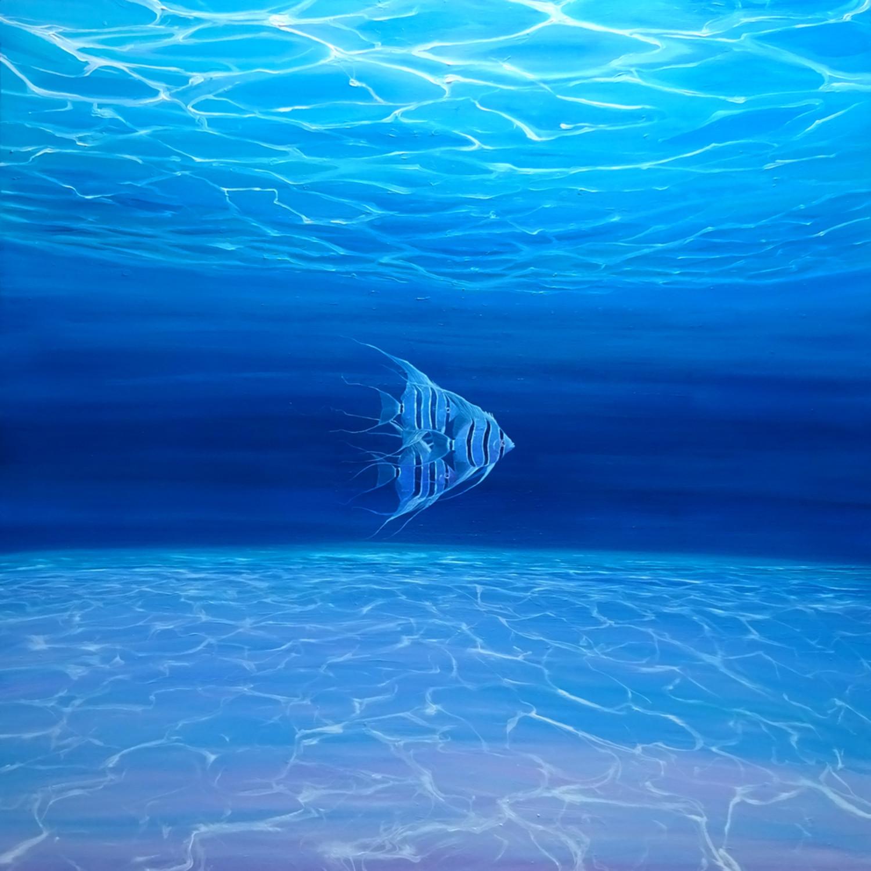 Blue angels blue sea 72 wmsyaz