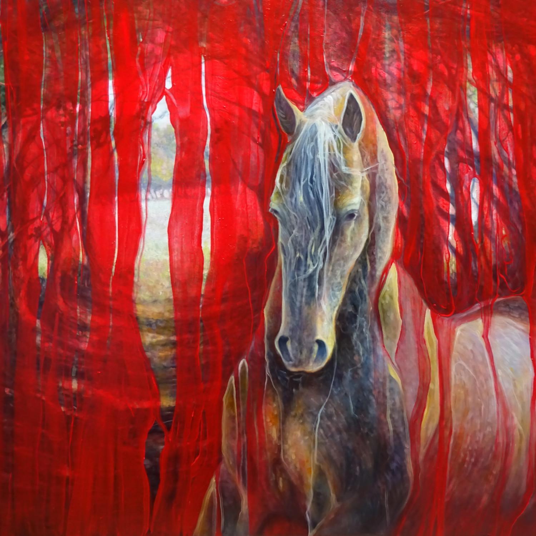 Horse metamorphosis 72 rqwmmq