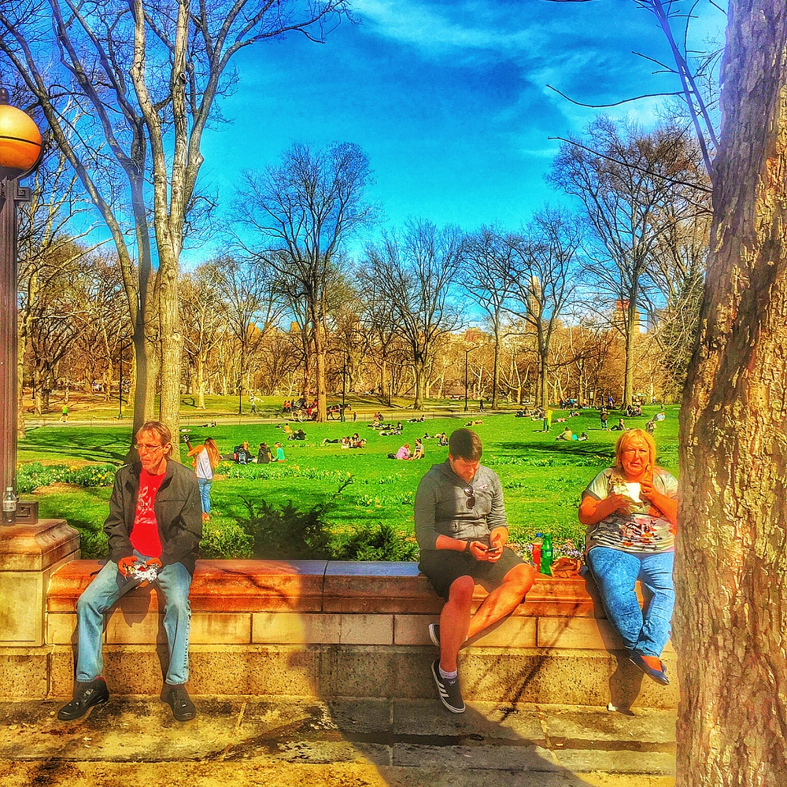 People in central park l39ccn