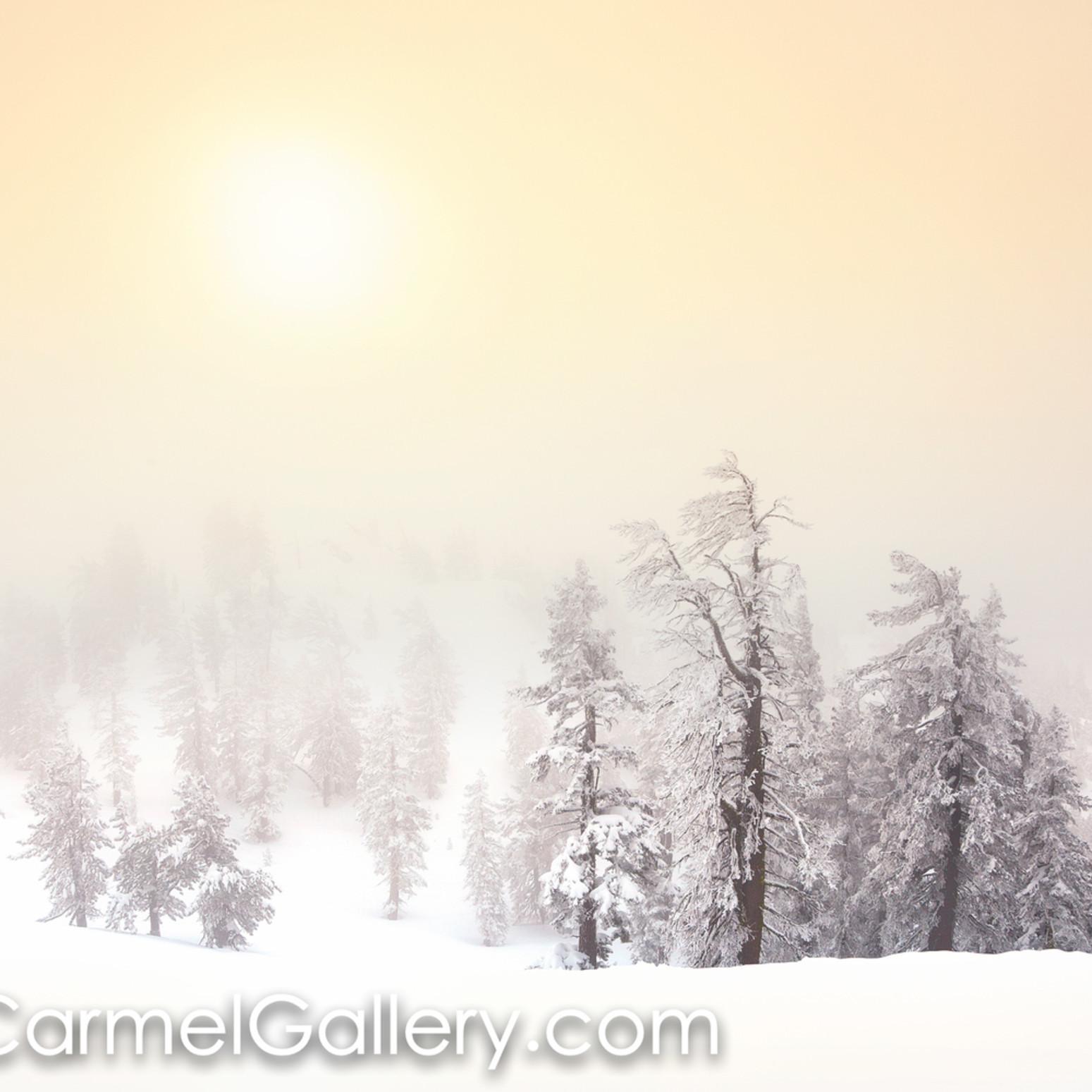 Winter sun vhdca4