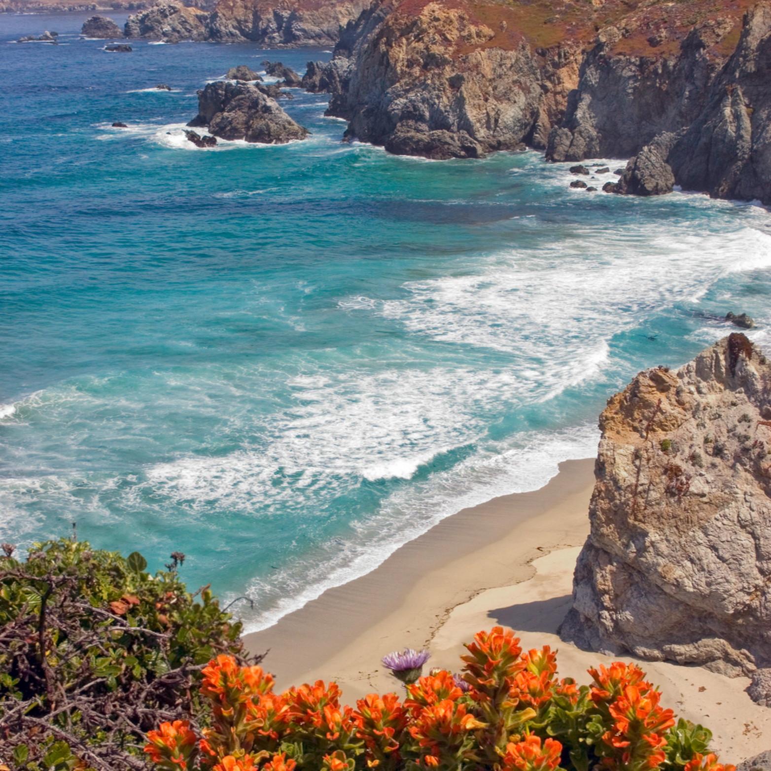 Big sur coast in spring gkg1uy
