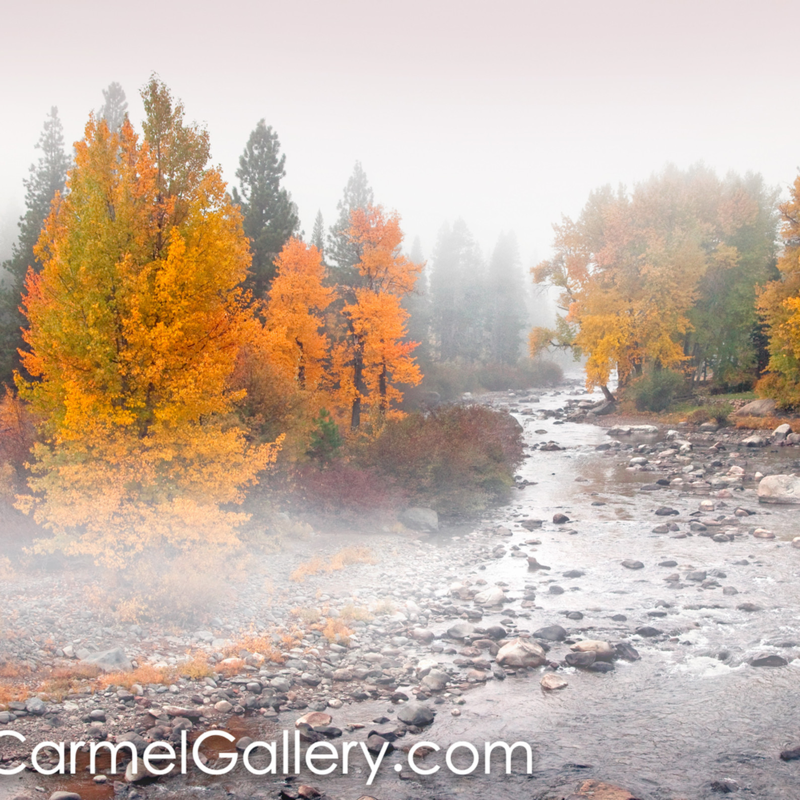 Autumn mist truckee river dtwikx