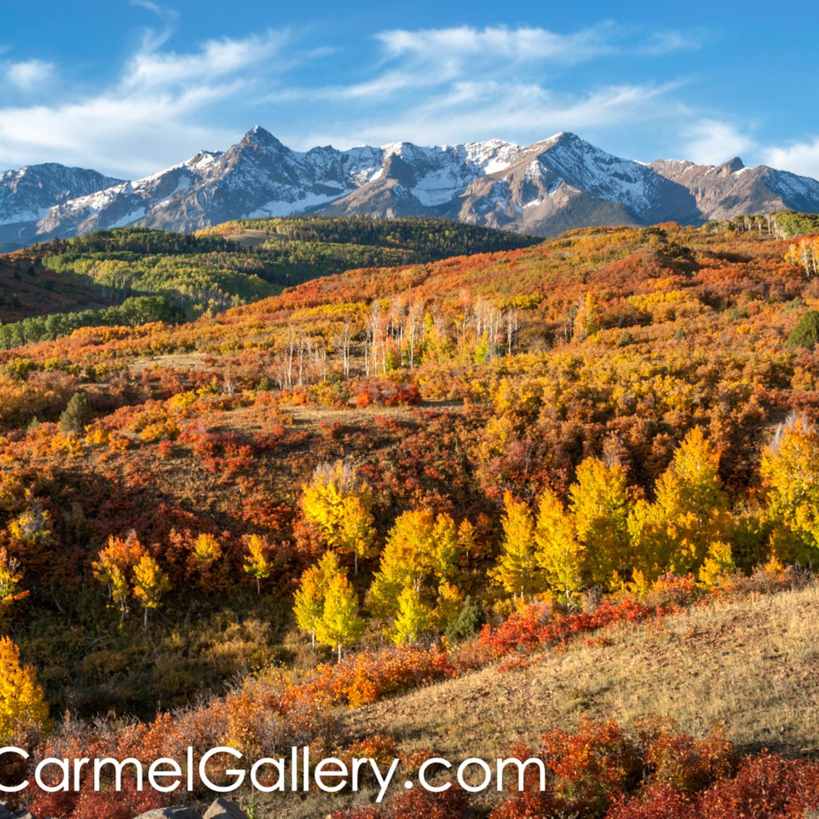 High country autumn qv2qnz