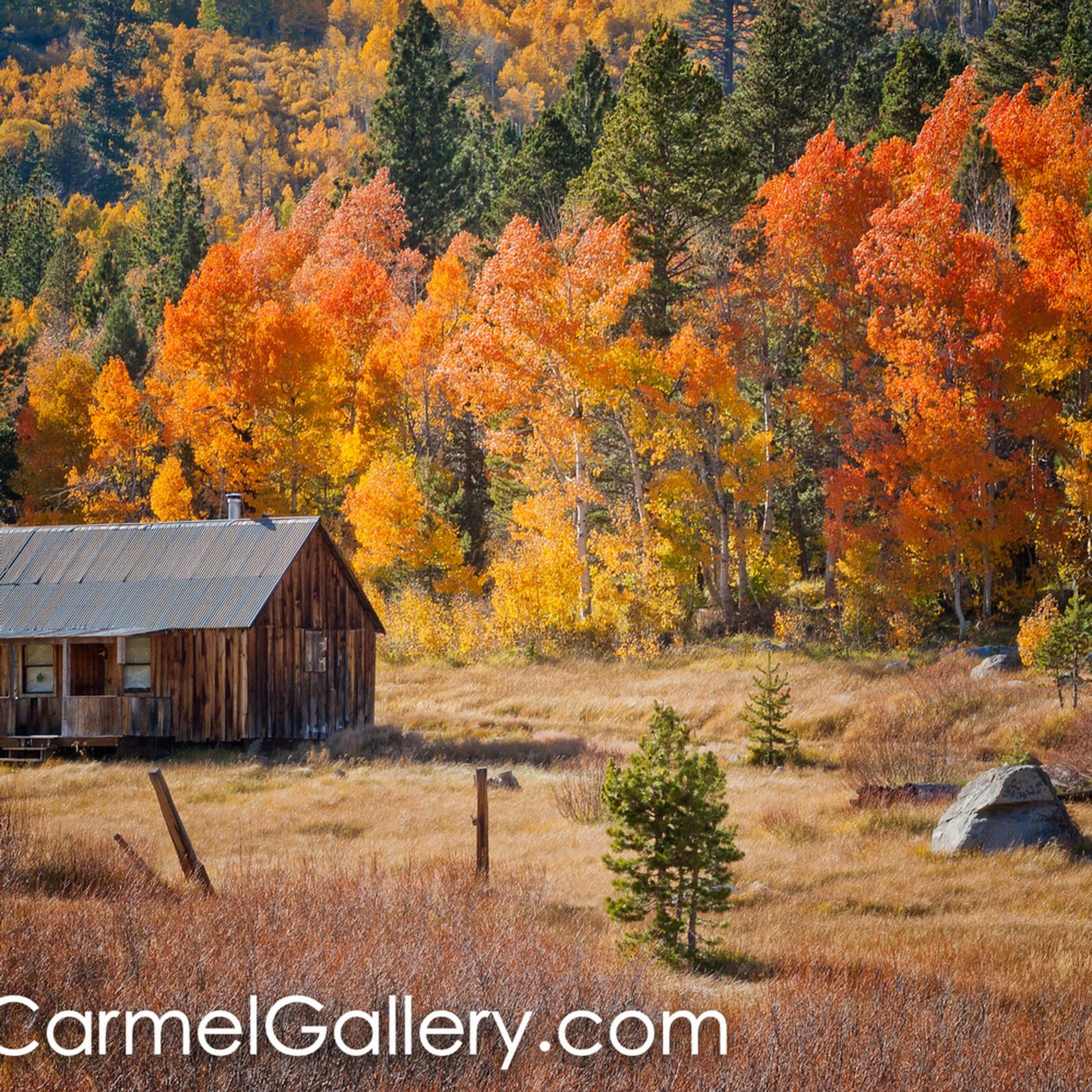 Hope cabin autumn qviefy