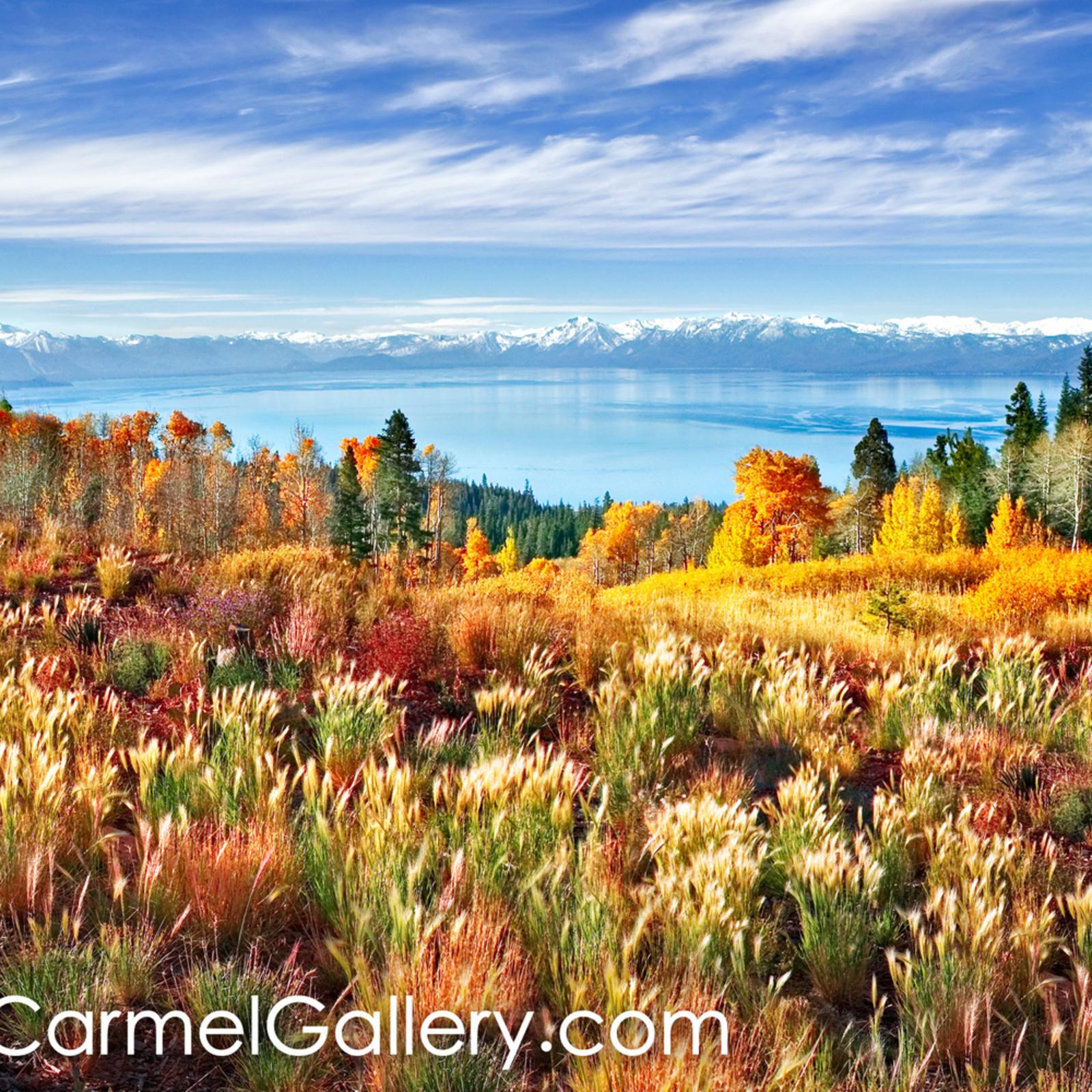 Autumn morning tahoe fxiaah