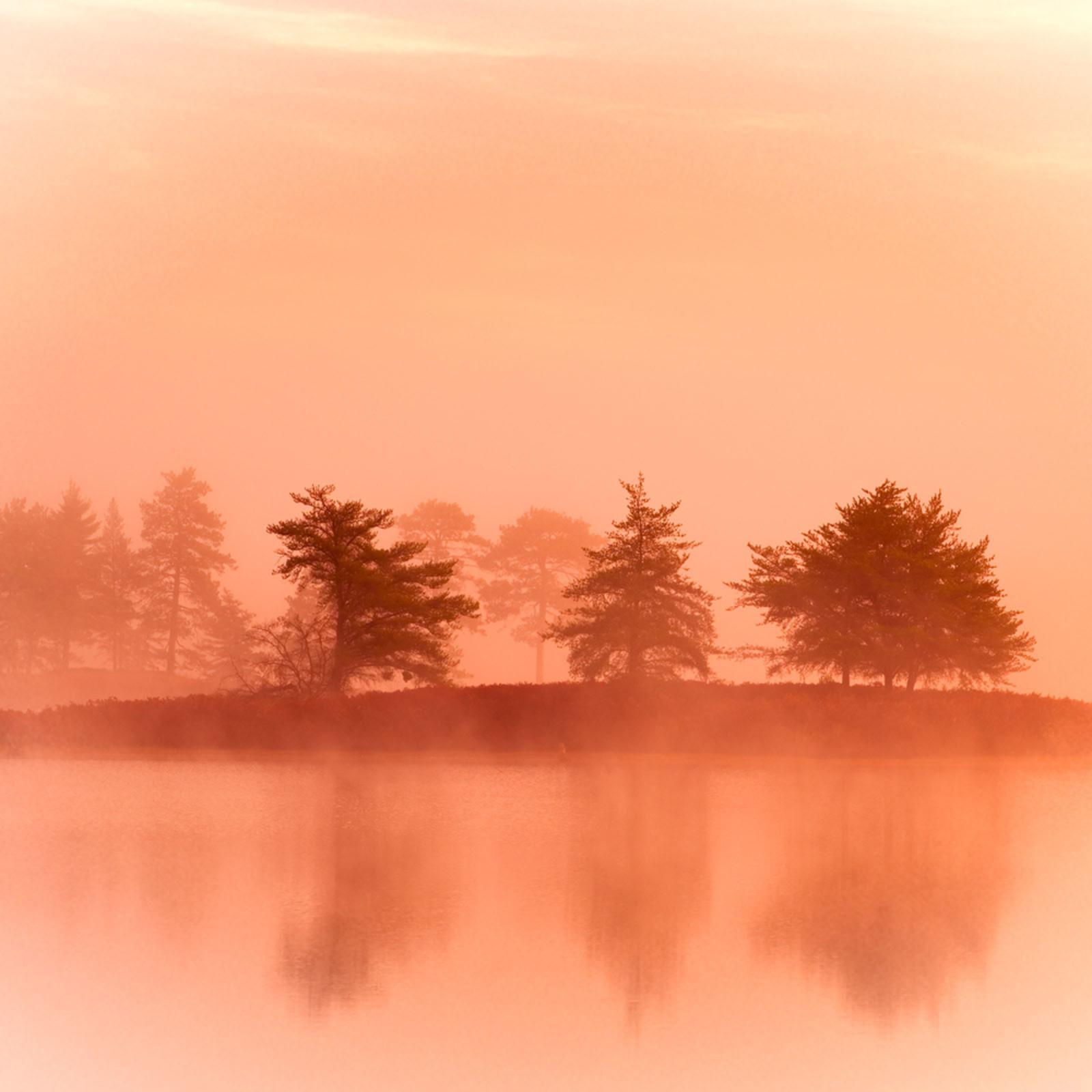 Vanishing mist 24x16 digital image cqgkan