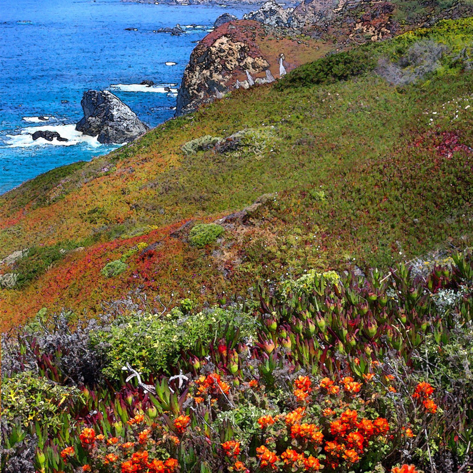 Big sur coast in spring cuxxhi