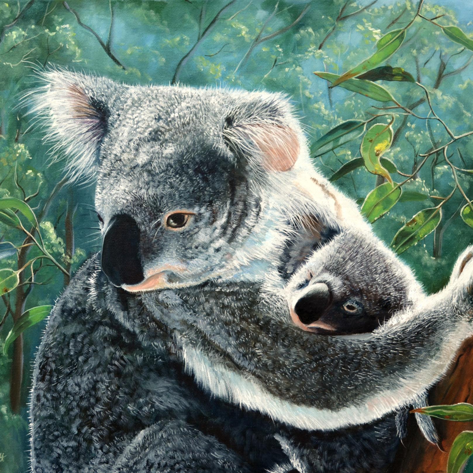 Koalaandbaby amothersloveeditedsocialmedia2 kmt5nj
