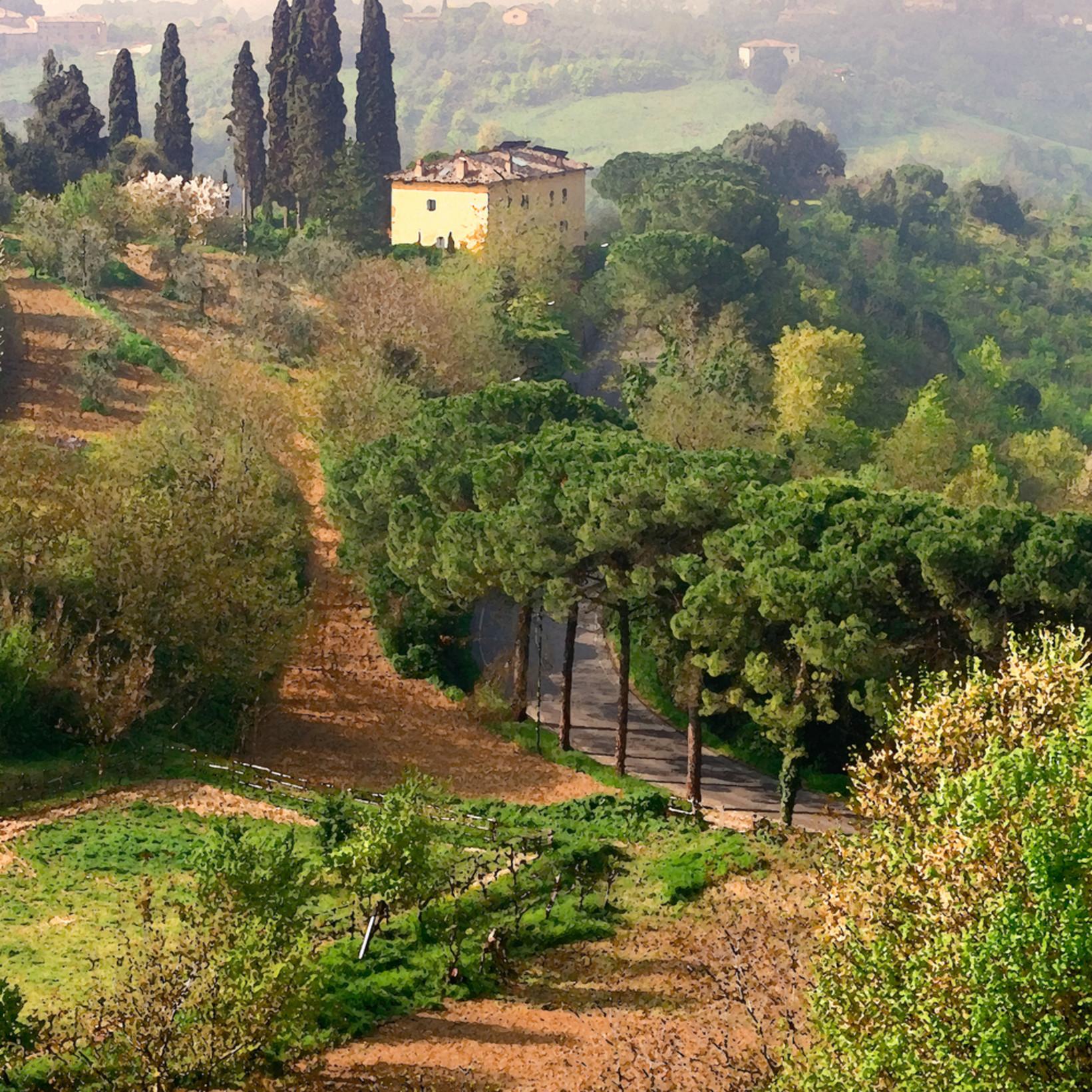 Morning mist tuscany mid9qr