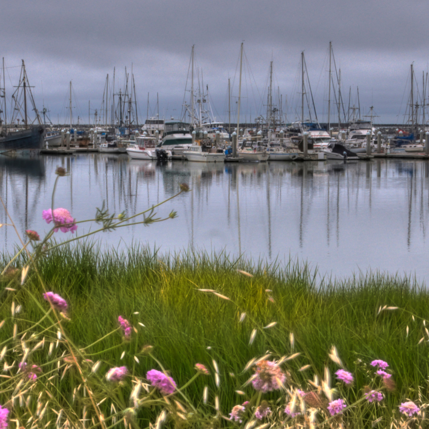 Harborboats2 oatsrt