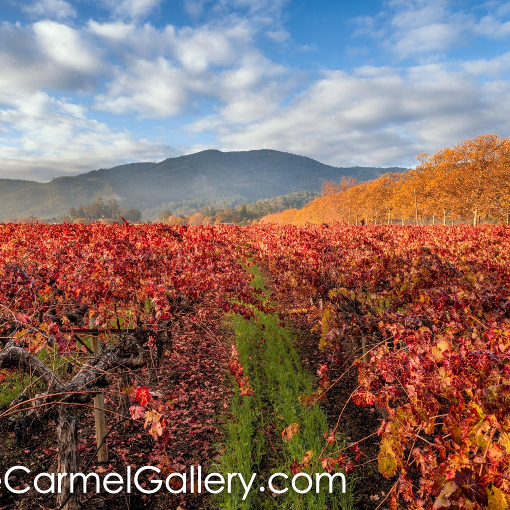 Autumn vista eeuumq
