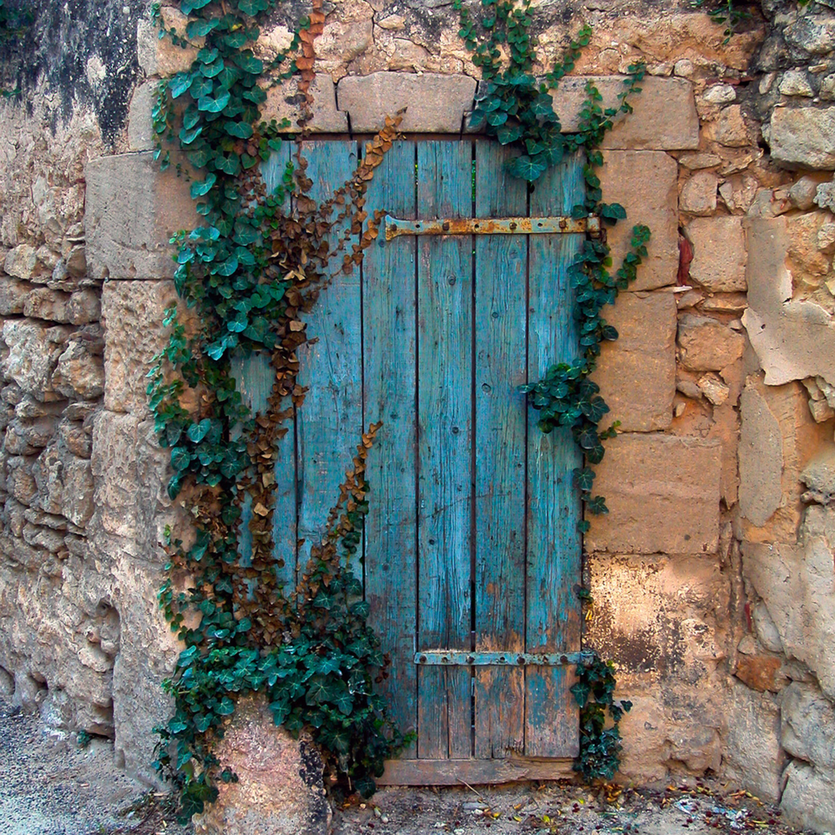 Blue door provence sal3qg