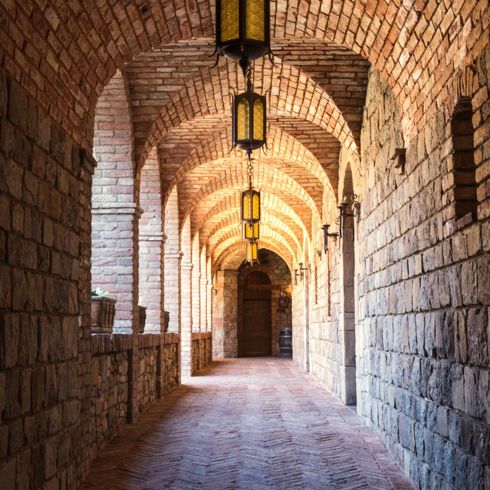 Castello di amorosa cloister ii m64t6m